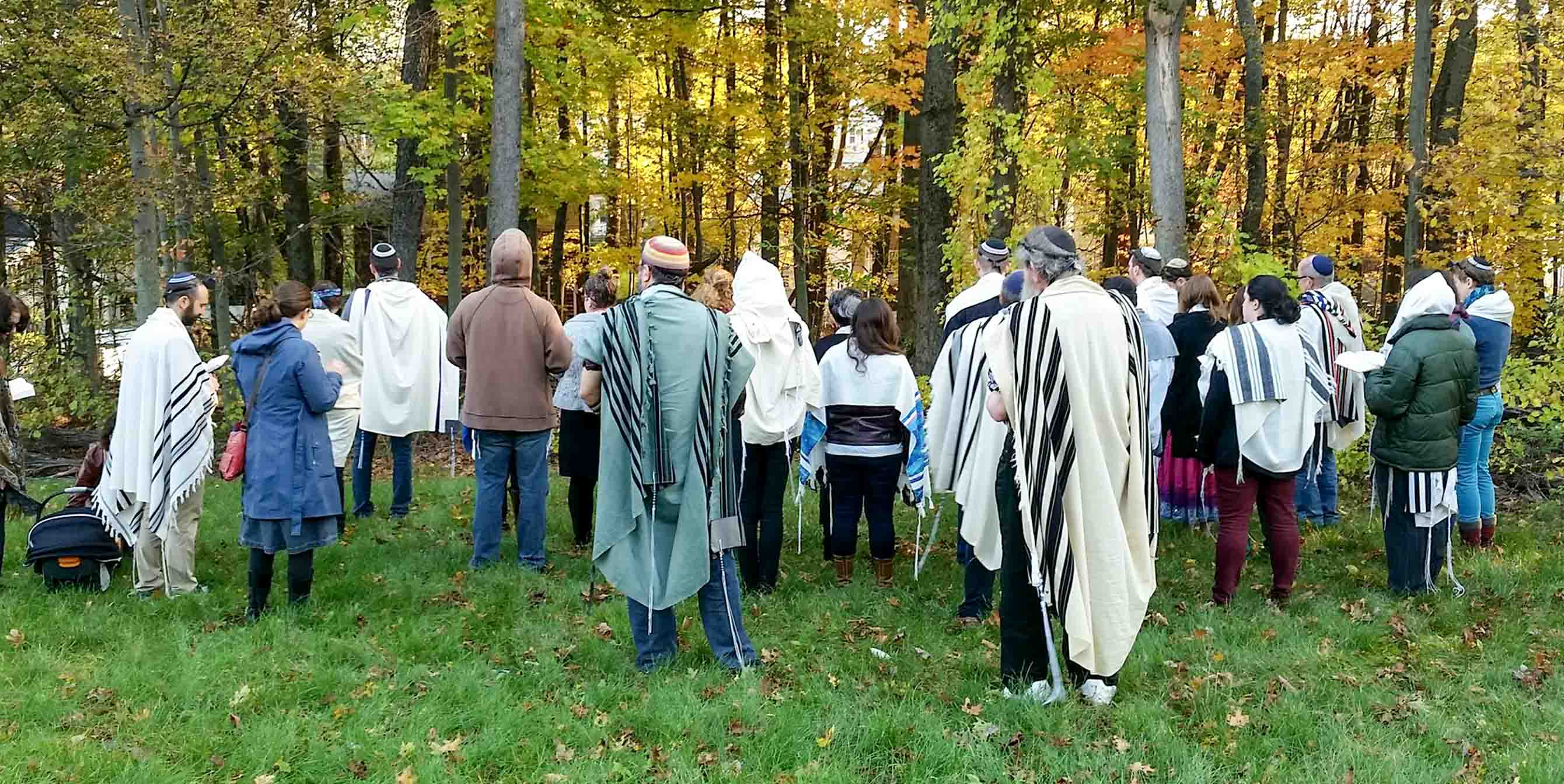 prayer in the woods