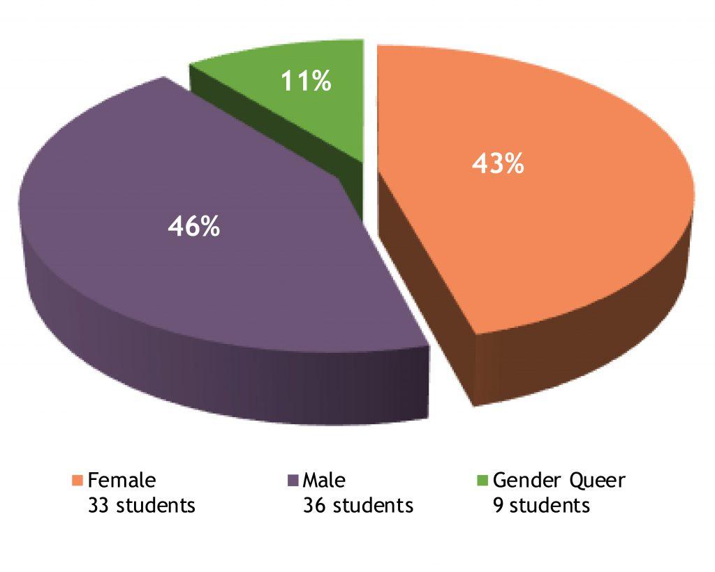 rabbinical school student gender pie chart